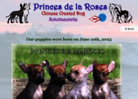 Princesdelaroses.de thumbnail