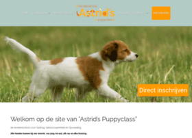 Puppyclass.nl thumbnail
