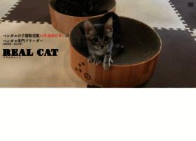 Realcat.jp thumbnail