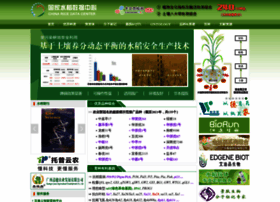 Ricedata.cn thumbnail