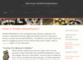 Safehavenrehab.org thumbnail