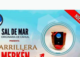 Saldemar.cl thumbnail