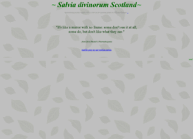 Salvia-divinorum-scotland.co.uk thumbnail