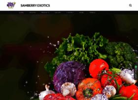 Samberry.in thumbnail