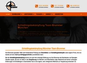 Schaedlingsbekaempfung-muenchen.net thumbnail