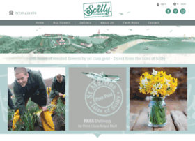 Scillyflowers.co.uk thumbnail