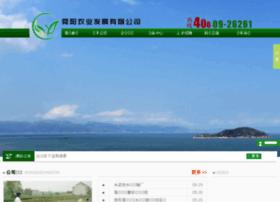 Sdshunyang.cn thumbnail