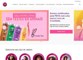 Seda.com.br thumbnail