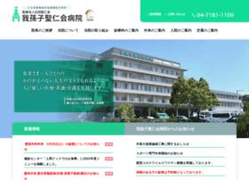 Seijinkai-abiko.jp thumbnail