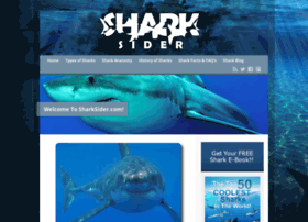 Sharksider.com thumbnail