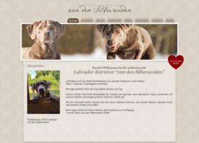 Silver-labrador-von-den-silberweiden.de thumbnail