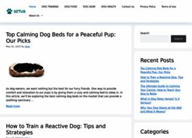 Situsportal.com thumbnail