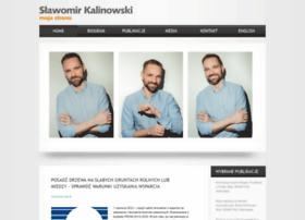 Skalin.pl thumbnail