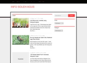 Solehagus.info thumbnail