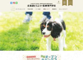 Ssb.ac.jp thumbnail