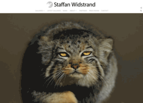 Staffanwidstrand.se thumbnail