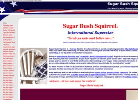 Sugarbushsquirrel.com thumbnail