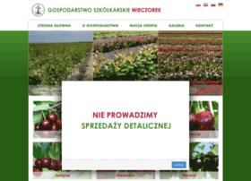 Szkolkawieczorek.pl thumbnail