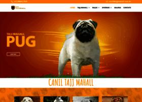 Tajjmahall.com.br thumbnail