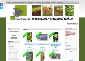 Taniekrzewy.pl thumbnail