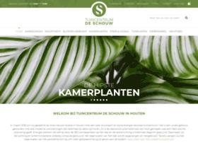 Tcdeschouw.nl thumbnail