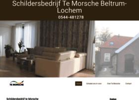 Te-morsche.nl thumbnail
