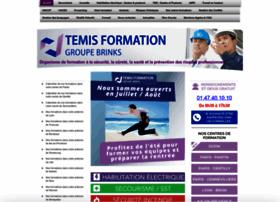 Temis-formation.fr thumbnail