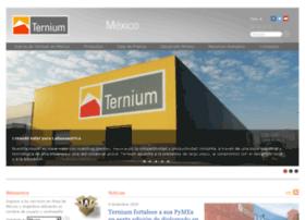 Ternium.cn thumbnail