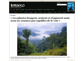 Terra-economica.info thumbnail
