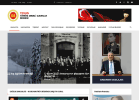 Tesud.org.tr thumbnail