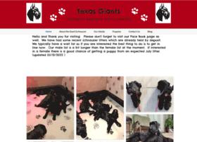 Texasgiants.org thumbnail