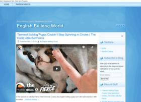 Theenglishbulldogs.com thumbnail
