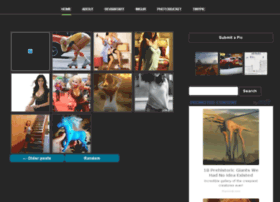 Theimage.gallery thumbnail