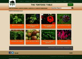 Thetortoisetable.org.uk thumbnail