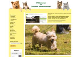 Tierheim-verlorenwasser.de thumbnail