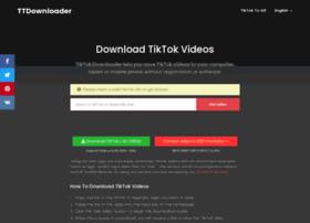 Tiktokdownloader.net thumbnail
