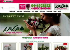 Tiltan-flowers.co.il thumbnail