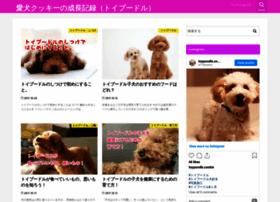 Toy-poodle.xyz thumbnail