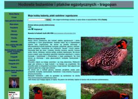 Tragopan.pl thumbnail
