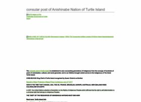 Turtleislandgov.com thumbnail