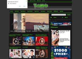 Twistmedia.info thumbnail