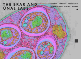 Unal-and-brar-labs.org thumbnail