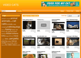 Videocats.in thumbnail