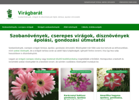 Viragbarat.hu thumbnail