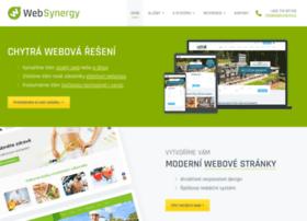 Websynergy.com thumbnail