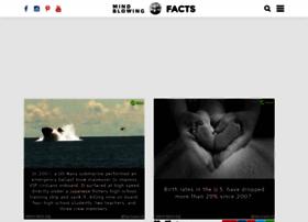 Weird-facts.org thumbnail