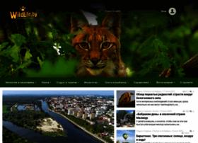 Wildlife.by thumbnail