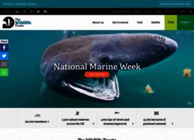 Wildlifetrusts.org thumbnail