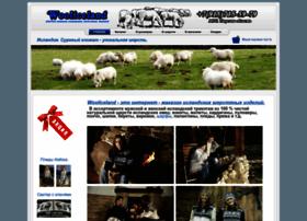 Wooliceland.ru thumbnail