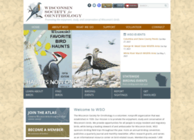 Wsobirds.org thumbnail